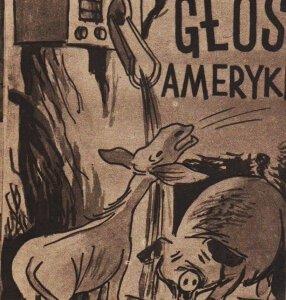 113968-glos-amer