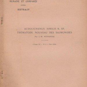 acrolichanus-similis