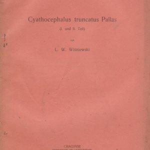 cyathocephalus