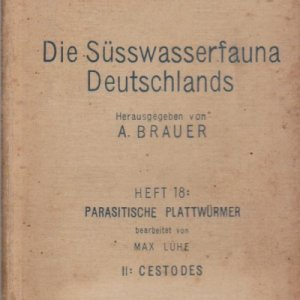 die-susswasserfauna-91361