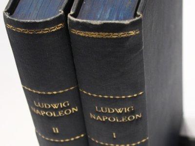 ludwig-napoleon